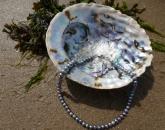 Ketting gemaakt van de Pauwa schelp
